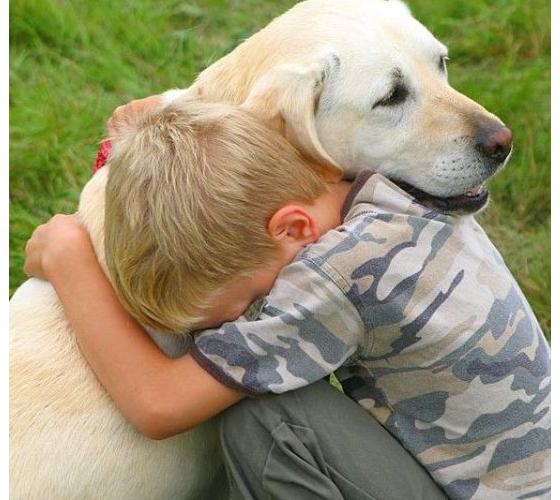 Indywidualna terapia z psem