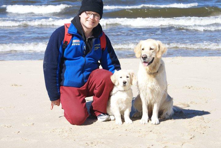 Jaki pies nadaje się doterapii?