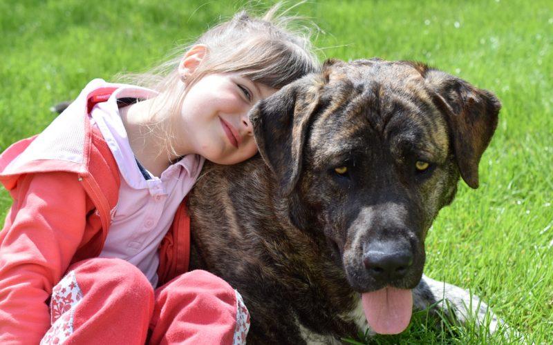 Zaburzenia zespektrum autyzmu aterapia zudziałem psa